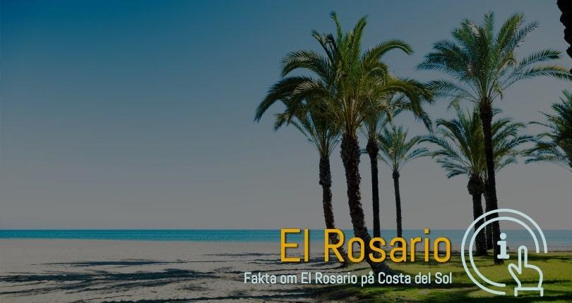 El Rosario fakta og spanske ferieboliger med postnummer 38109