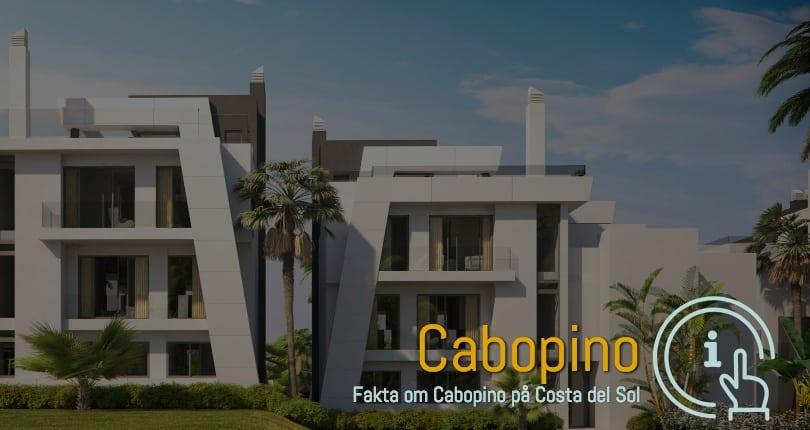 Ferie og boliger i Cabopino 29604 Spanien