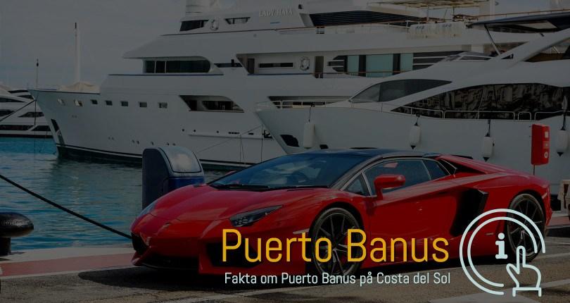 Puerto Banus ferie boliger i område 29603