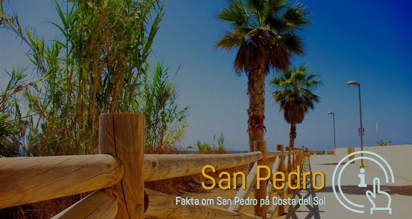 San Pedro ferie boliger i område 29670