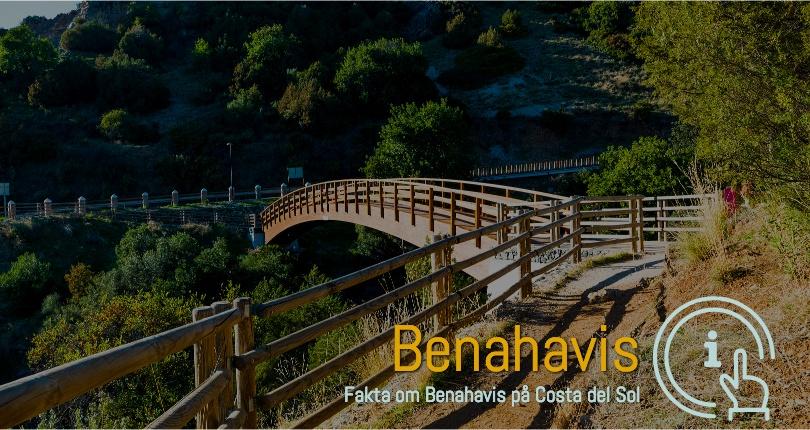 Benahavis ferie boliger i område 29679