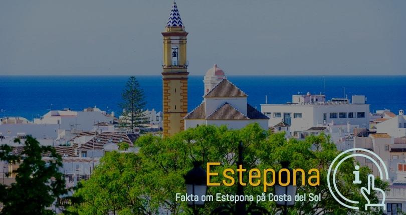Estepona ferieboliger i område 29680
